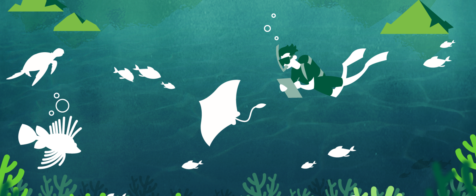 Illustration of a Conservation volunteer on a survey dive